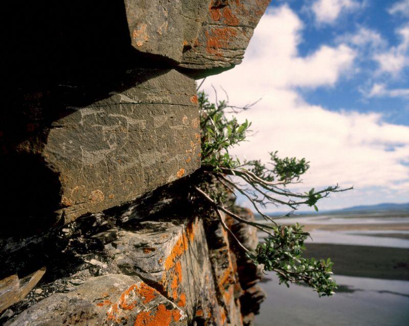 Значительная часть наскальных рисунков Пегтымеля расположена на высоте 20-30 метров над  уровнем реки.
